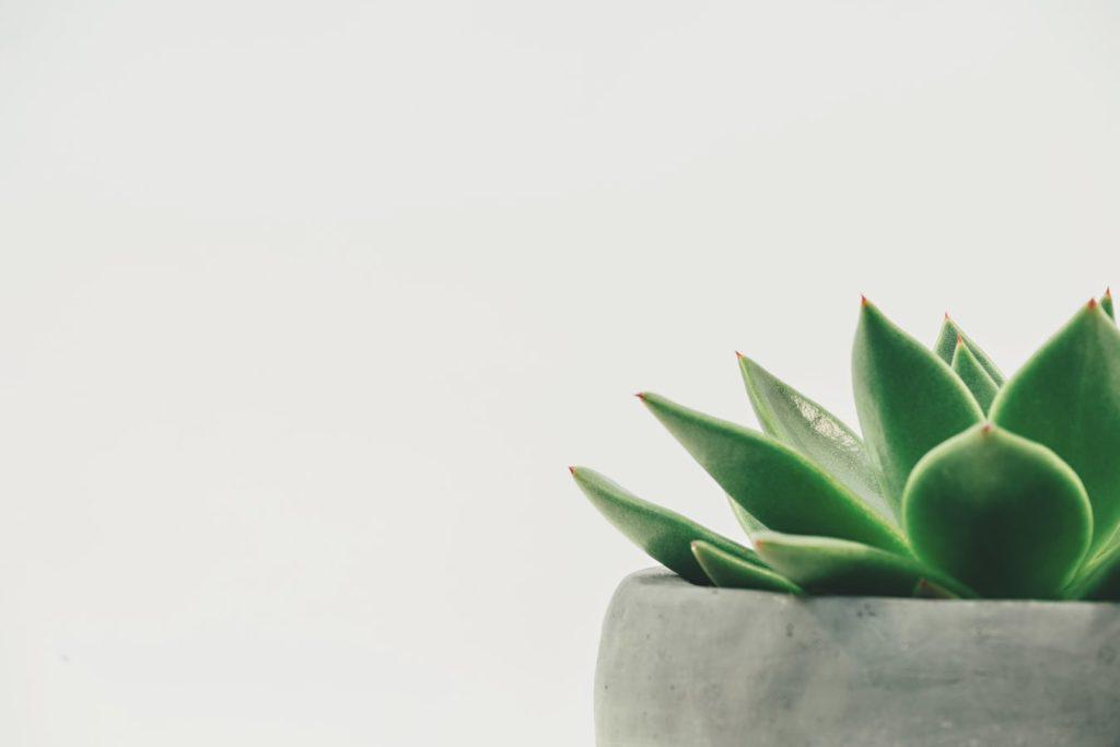 calme zen méditation hypnose relaxation